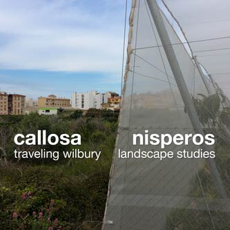 callosa nisperos